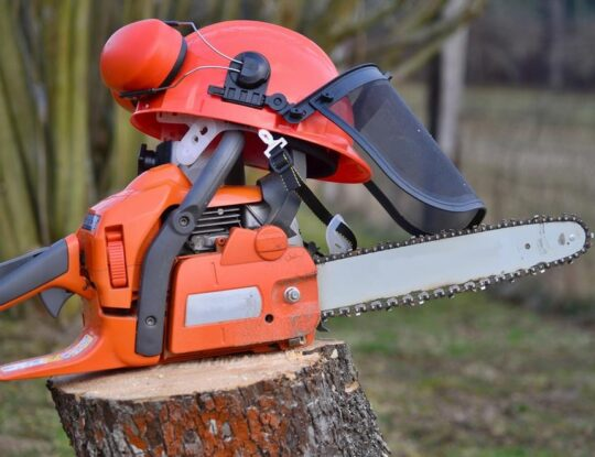 Commercial Tree Services-San Diego Tree Trimming Pros & Tree Removal Services-We Offer Tree Trimming Services, Tree Removal, Tree Pruning, Tree Cutting, Residential and Commercial Tree Trimming Services, Storm Damage, Emergency Tree Removal, Land Clearing, Tree Companies, Tree Care Service, Stump Grinding, and we're the Best Tree Trimming Company Near You Guaranteed!