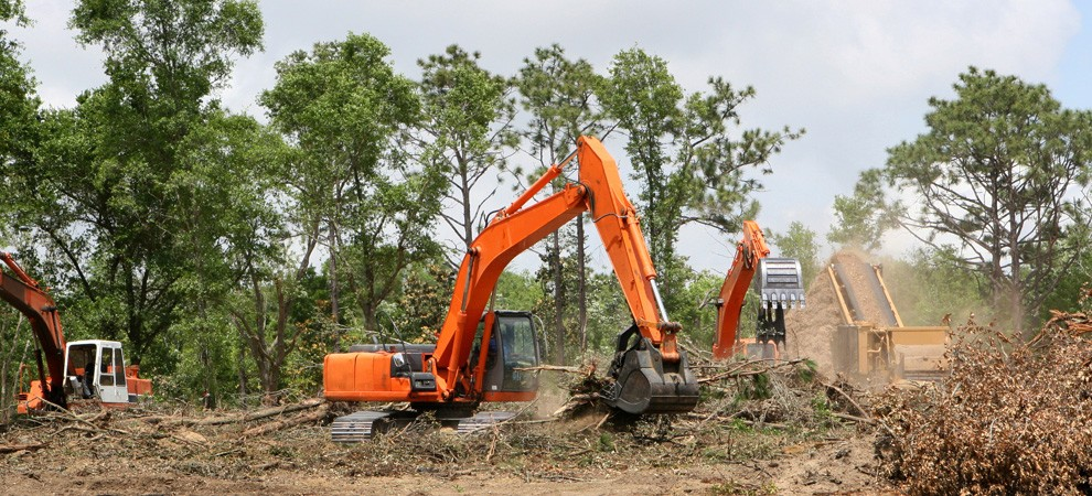 Land Clearing-San Diego Tree Trimming Pros & Tree Removal Services-We Offer Tree Trimming Services, Tree Removal, Tree Pruning, Tree Cutting, Residential and Commercial Tree Trimming Services, Storm Damage, Emergency Tree Removal, Land Clearing, Tree Companies, Tree Care Service, Stump Grinding, and we're the Best Tree Trimming Company Near You Guaranteed!