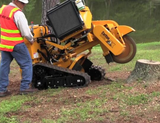 Stump Grinding-San Diego Tree Trimming Pros & Tree Removal Services-We Offer Tree Trimming Services, Tree Removal, Tree Pruning, Tree Cutting, Residential and Commercial Tree Trimming Services, Storm Damage, Emergency Tree Removal, Land Clearing, Tree Companies, Tree Care Service, Stump Grinding, and we're the Best Tree Trimming Company Near You Guaranteed!