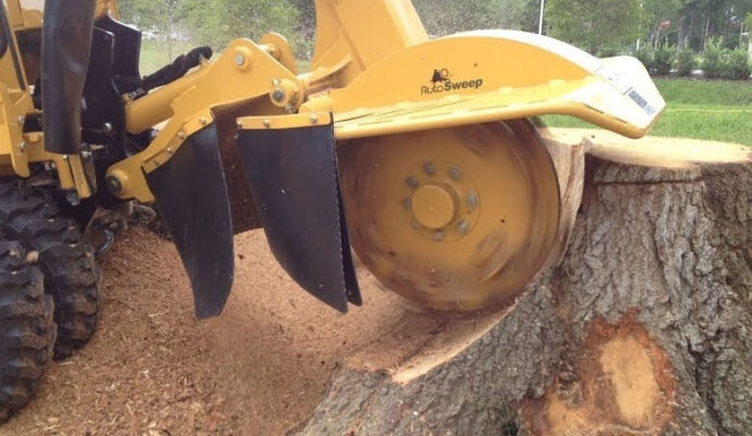 Tree Stump Removal & Grinding-San Diego Tree Trimming Pros & Tree Removal Services-We Offer Tree Trimming Services, Tree Removal, Tree Pruning, Tree Cutting, Residential and Commercial Tree Trimming Services, Storm Damage, Emergency Tree Removal, Land Clearing, Tree Companies, Tree Care Service, Stump Grinding, and we're the Best Tree Trimming Company Near You Guaranteed!